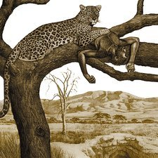 Early hominid killed by a leopard