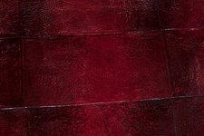 Bullfrog skin leather