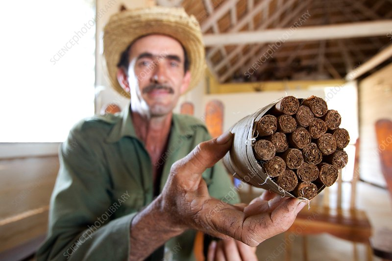 Cuban cigar production, Cuba