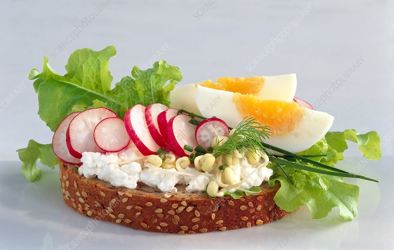 Egg and cottage cheese salad on bread