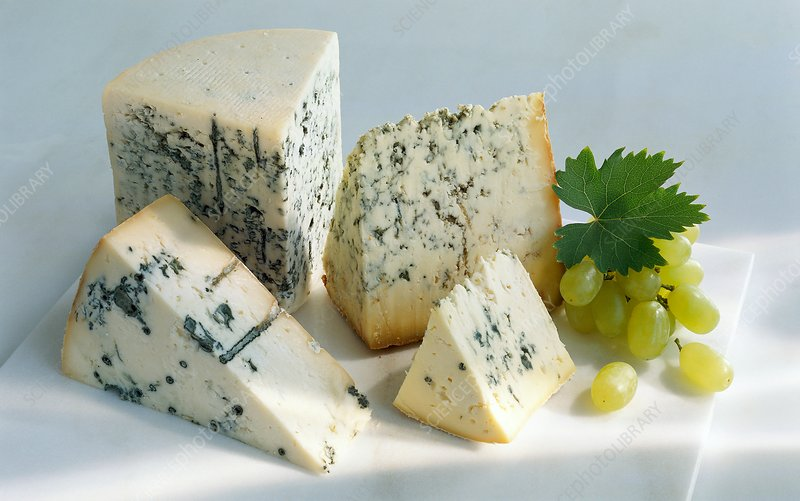 Assorted blue cheeses