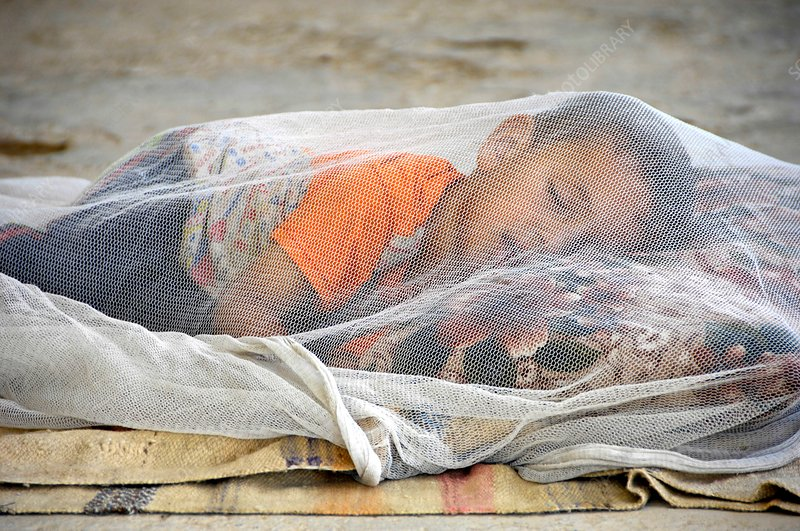 Child under mosqito net, Iraq
