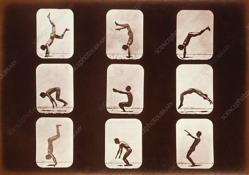 Muybridge motion study, 1870s
