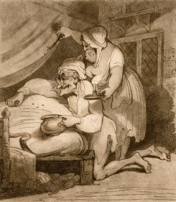 Catching bedbugs, 18th century