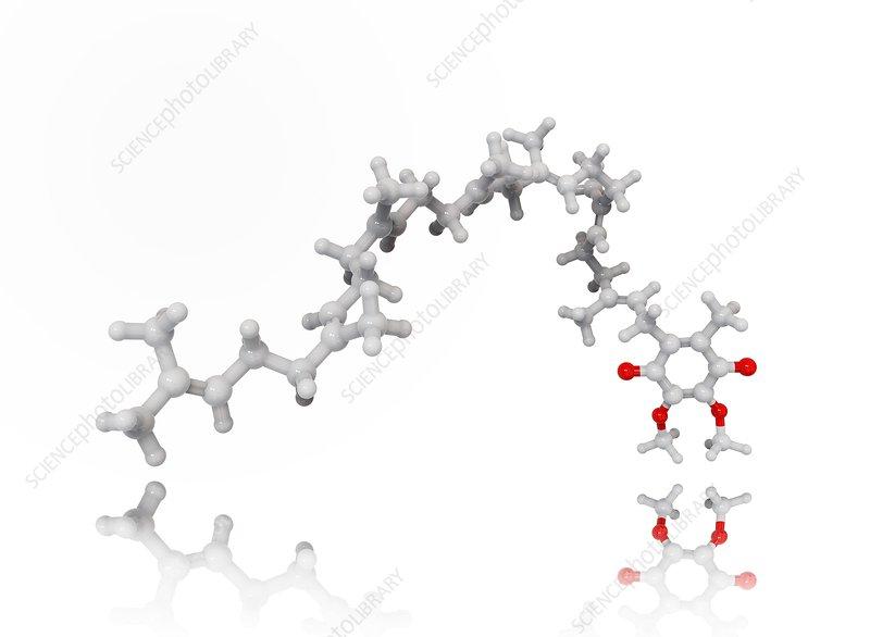 Coenzyme Q10 molecule