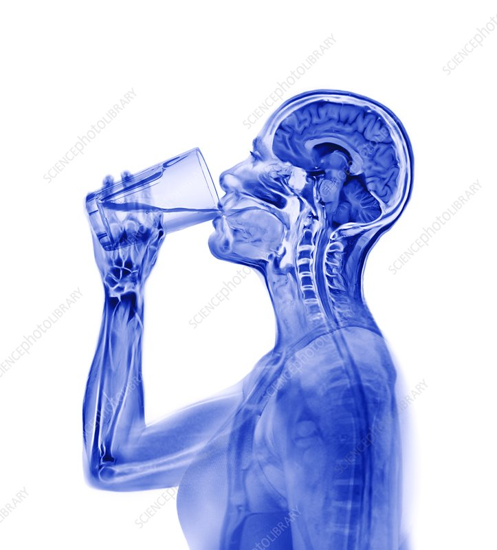 Woman drinking, composite image