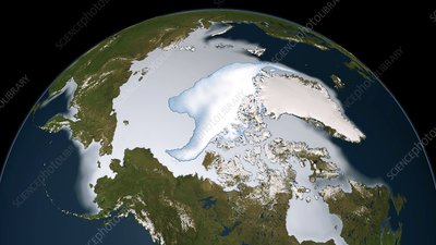 Arctic sea ice coverage, 2012