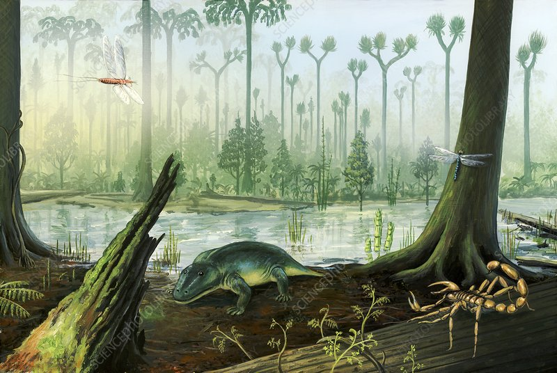 Carboniferous Landscape Stock Image C0144723 Science Photo