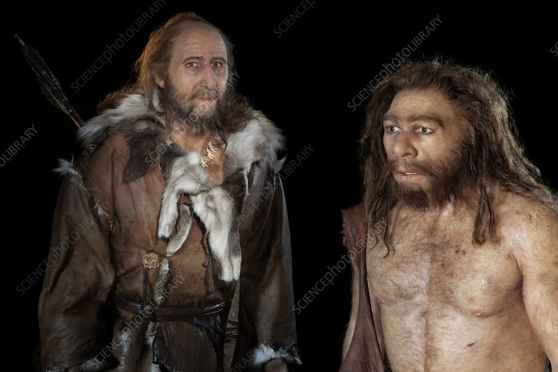 Cro-Magnon and Neanderthal models