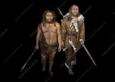 Neanderthal and Cro-Magnon models