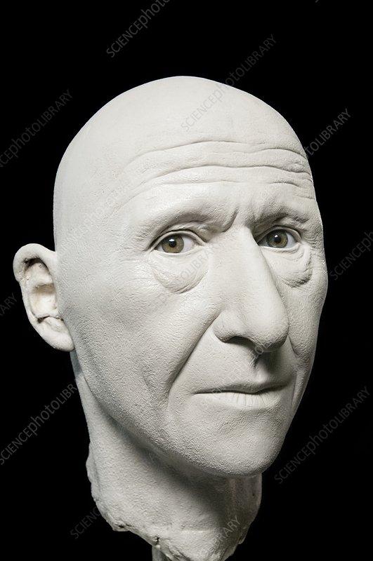 Cro-Magnon model head