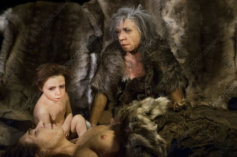 Neanderthal culture, reconstruction