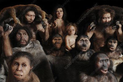 Anthropological models, group portrait