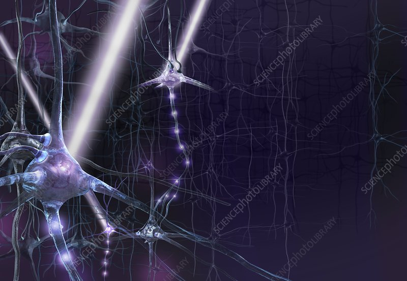 Optogenetics, conceptual artwork