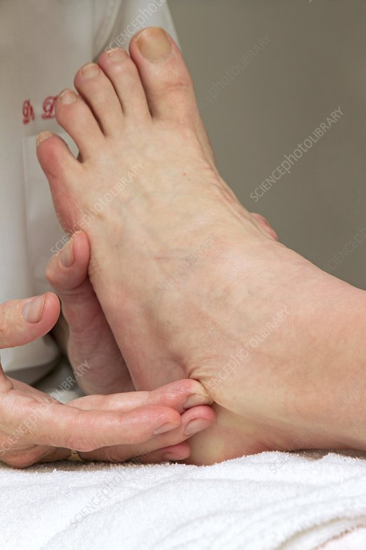 Physiotherapy, ankle palpation