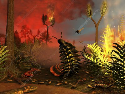 Carboniferous forest fire, artwork