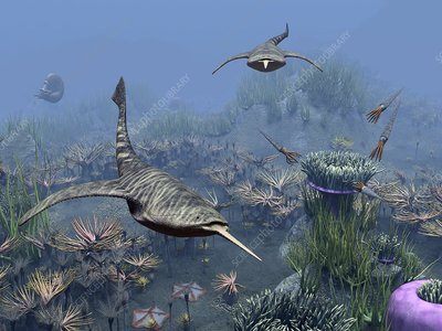 Devonian sea, artwork