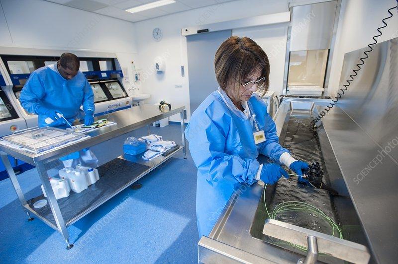 Endoscope sterilisation