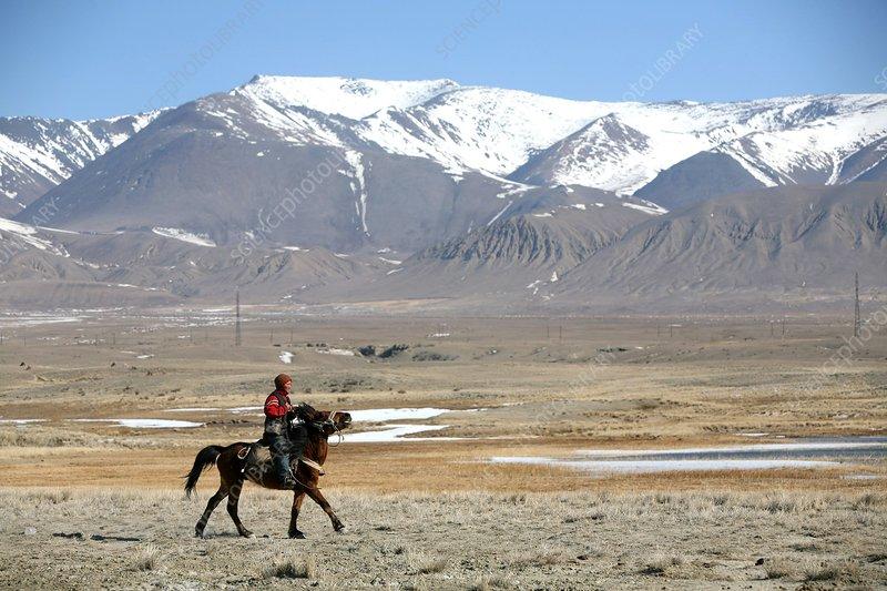 Mounted shepherd in Russian steppe