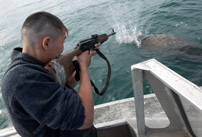 морская охота и рыбалка