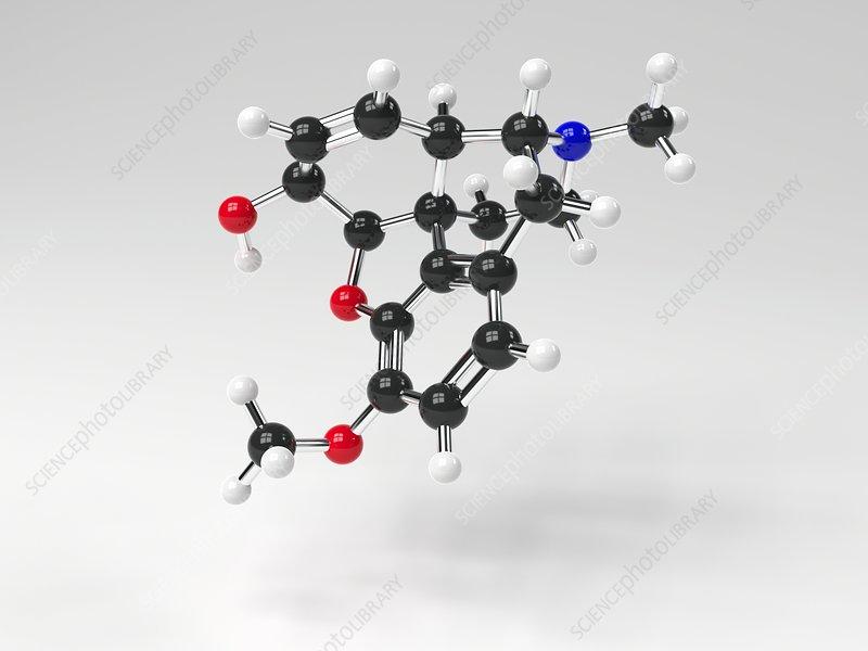 Codeine molecule