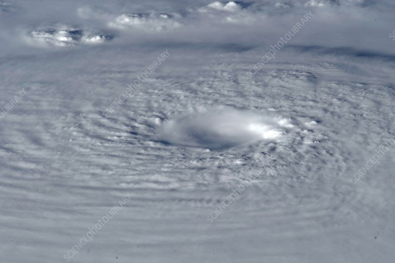 Typhoon Bopha, ISS image