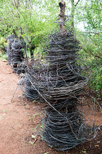 Wire snares for poaching, South Africa