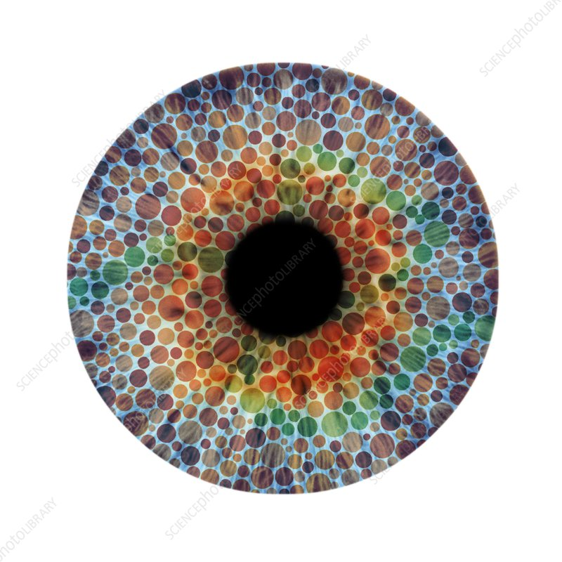 Colour blindness, conceptual image