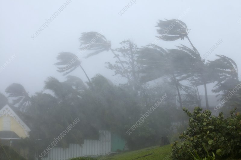 Strong winds during Hurricane Irene