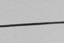 High-contrast direct DNA image, TEM