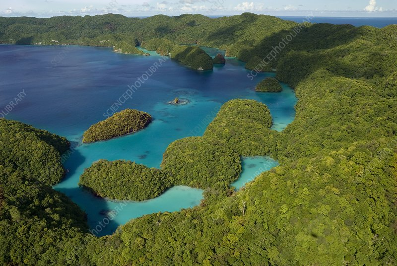 Limestone islands of Palau