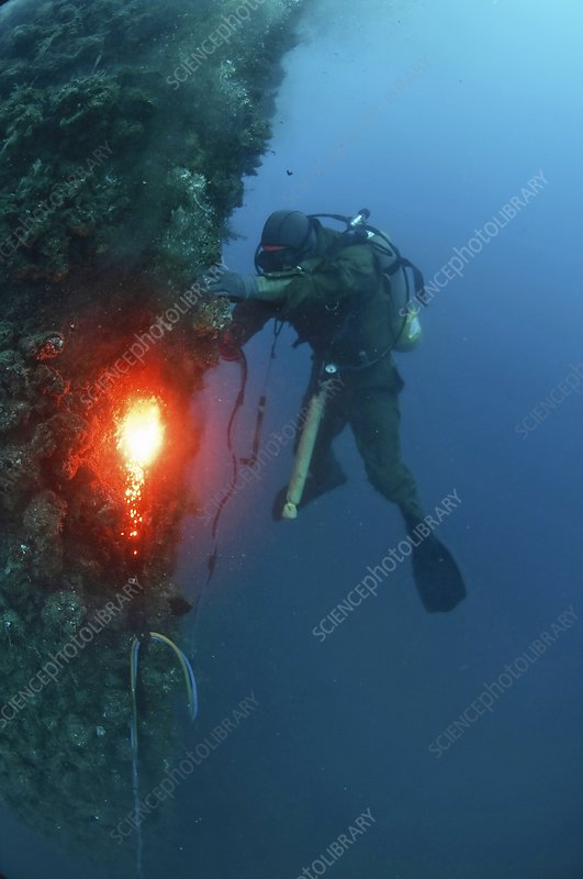 Commercial Diver at work