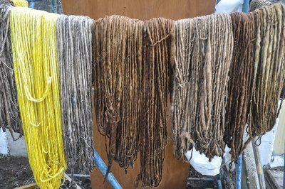 Natural Colour Dye