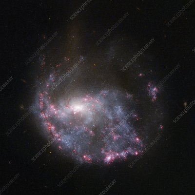 Spiral galaxy NGC 922, HST image