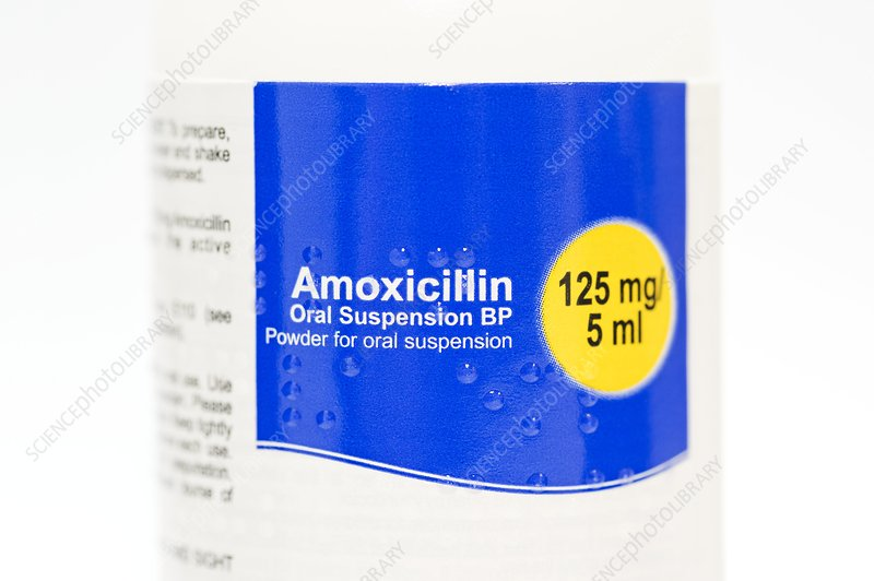 Amoxicillin antibiotic powder