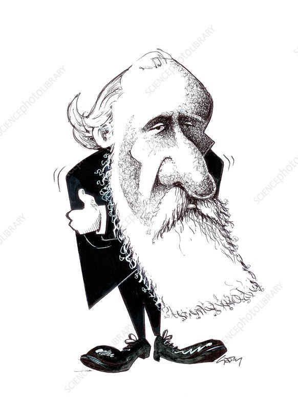 lord kelvin  caricature - stock image c015  6712