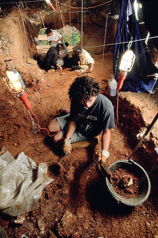 Atapuerca fossil excavation site