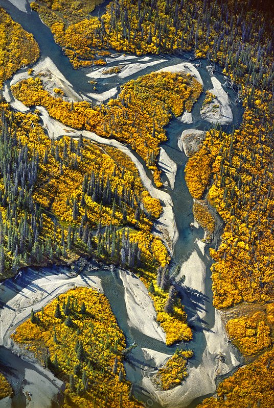 River channels, aerial view, Alaska, USA
