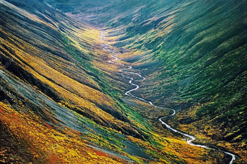 Fall colours, Bremmer Valley, Alaska