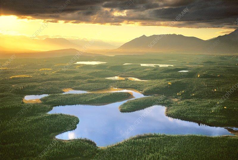 Glacial valley, aerial view, Alaska