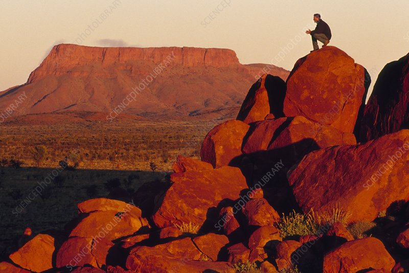 Hiker at dawn, Central Desert, Australia