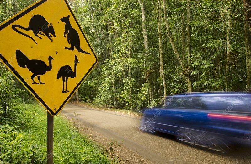 Wildlife crossing sign, Australia