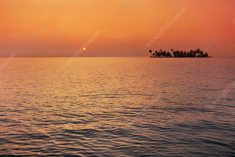 Sunrise over palm Tobacco Reef, Belize