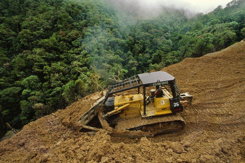 Bulldozer on logging road