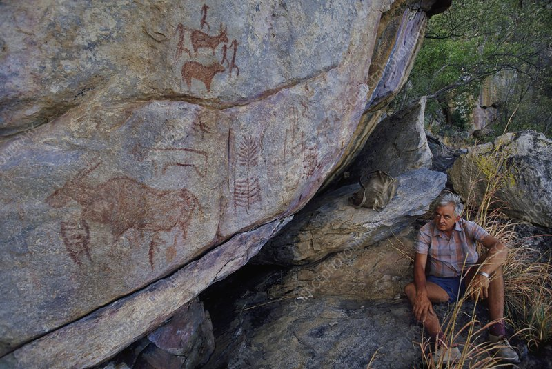 A man looking at rock paintings, Botswana