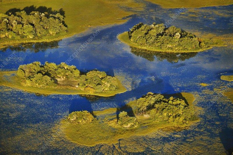 Palm islands, aerial view, Botswana