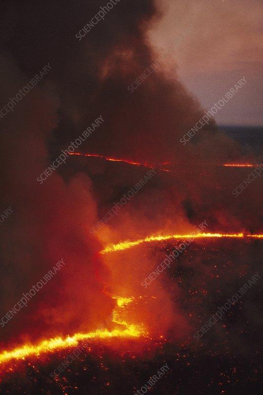Brush fire, aerial view, Botswana