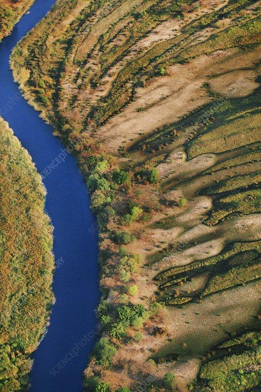 Vegetation patterns, Okavango, Botswana
