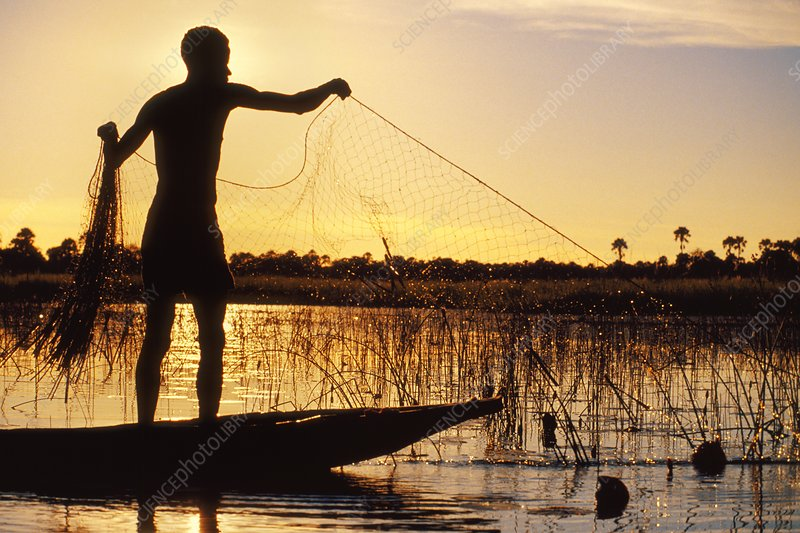 Man fishing at sunset, Botswana