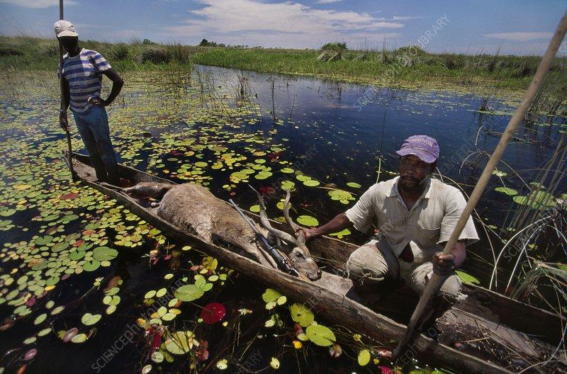 Local hunters take home a sitatunga